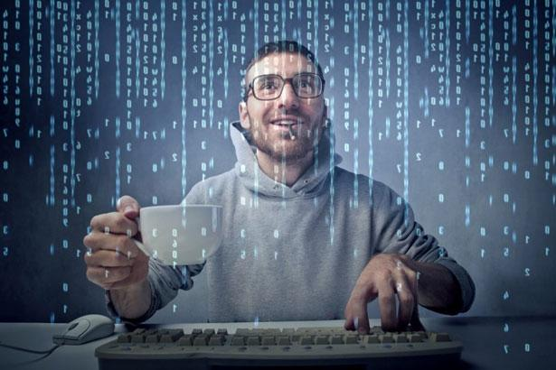 Работа веб-программистом