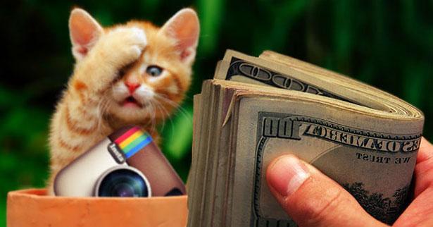 Деньги, котик, инстаграм