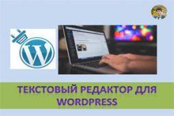 Текстовый редактор для WordPress