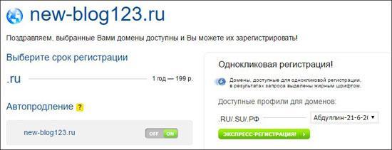указание срока регистрации домена и автопродления