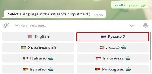 Я выбираю русский язык
